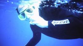 Snorkeling at Heron Island