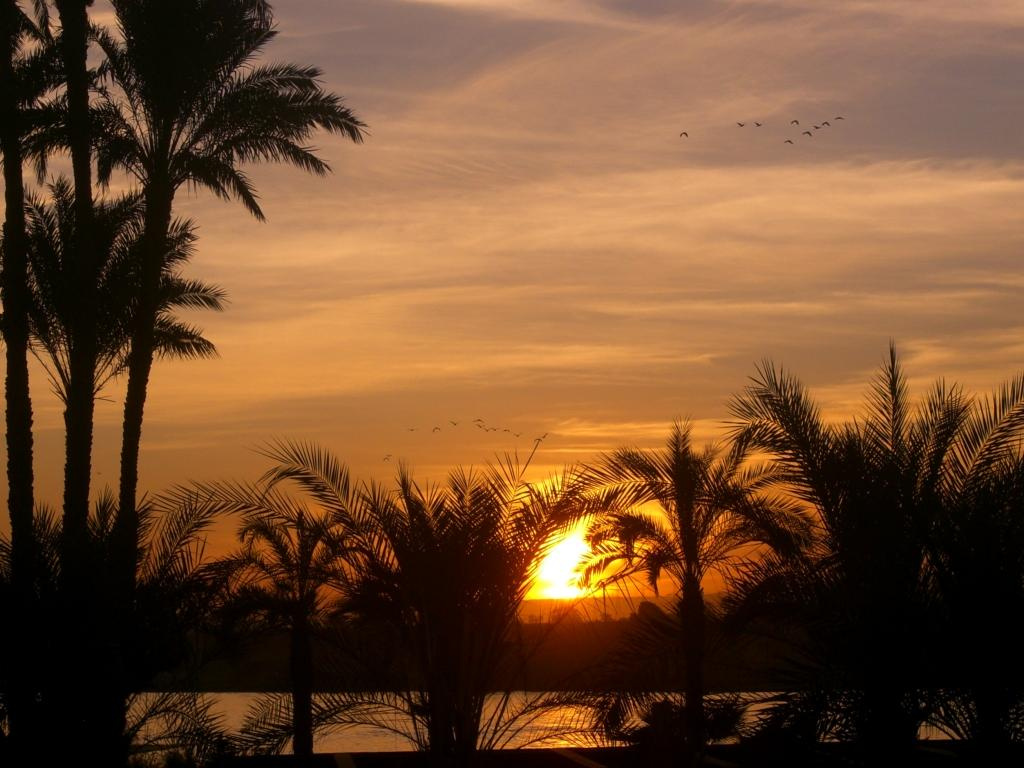 visiting egypt�s ruins from a nile river cruise