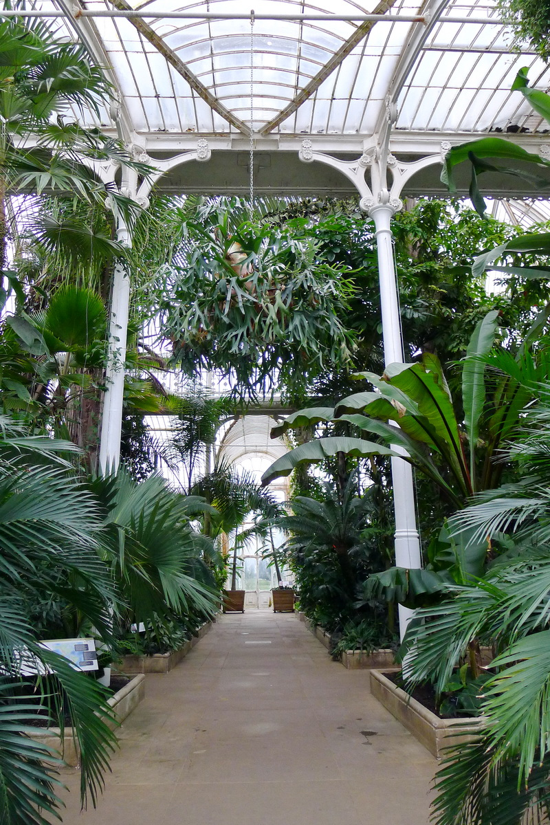Palm House At Kew Gardens Photo Credit Jill Browne Buckettripper