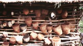 Baganda Drums
