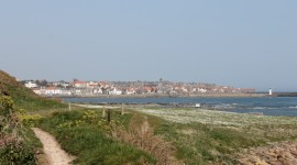 Try a walk along thre Fife Coastal Path