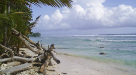 Unspoiled Beach of Kosrae