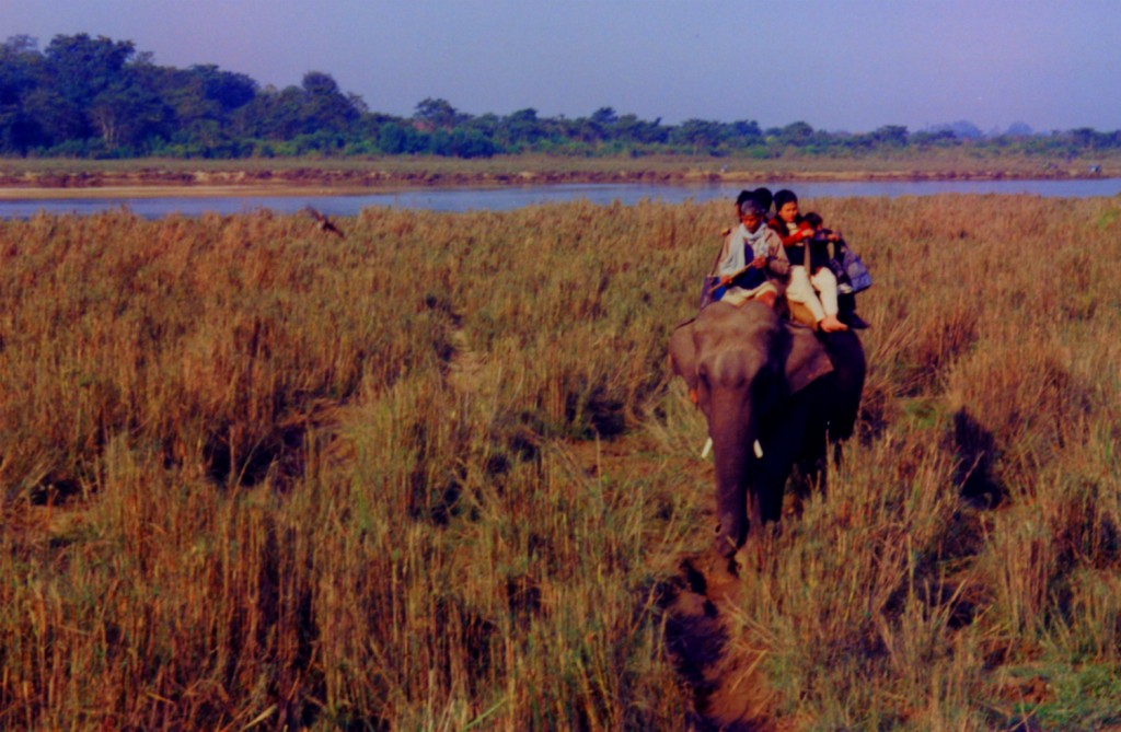 On elephant-back safari in Royal Chitwan National Park, Nepal