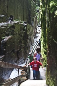 The Flume Gorge in Franconia Notch (Stillman Rogers Photo)