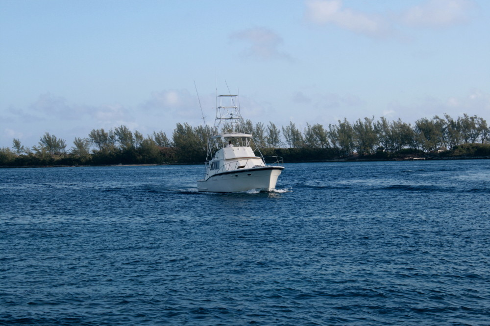 Deep sea fishing in nassau bahamas buckettripper for Fishing nassau bahamas