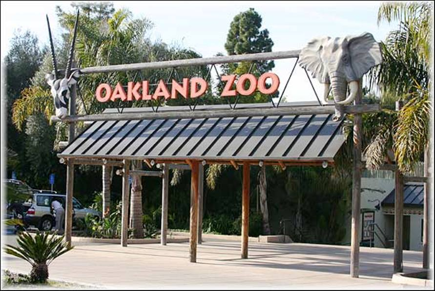 Visiting The Oakland Zoo In The San Francisco Bay Area