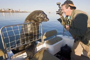 Visiting man photographs Robbie the sea lion, who comes to greet tour boats in Walvis Bay, just south of Swakopmund, a popular adventure tourist center on the Namibia coast.