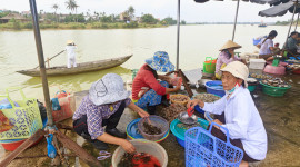 Women sell vegetables, spices, fruit, fresh fish and flowers at market along Thu Bon River in Hoi An in central Vietnam. Here, women sell shrimp and crabs. Photo by Yvette Cardozo