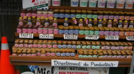 Montreal's Jean Talon Market