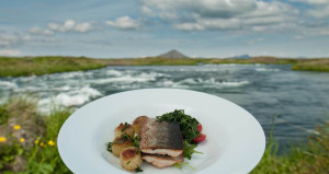 Typical modern fish dish in Iceland. Photo by Icelandic Tourist Board.