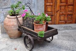 A planter on Chios