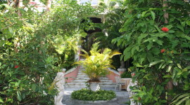 The lush and elegant back courtyard at Graycliff Hotel.