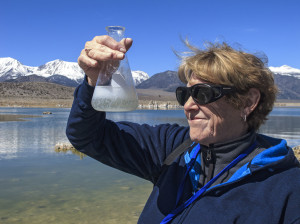 Making mini tufa towers in a glass beaker at Mono Lake in California. Here, visitors get to mix spring and lake water in a beaker and watch the chemical process make tufa particles.Tufa towers form when calcium rich fresh spring water combines with the carbonate rich, salty water of Mono Lake.