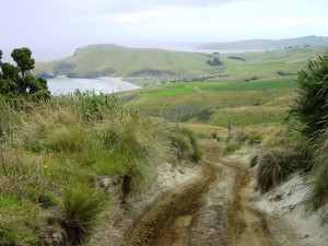 The beginning of the muddy trail to  the cliff (Credit: MCArnott)