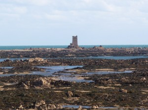 Seymour Tower and Intertidal Reef (photo: Anthony Toole)