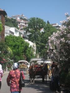 Horse & Cart Beside Spring Flowers
