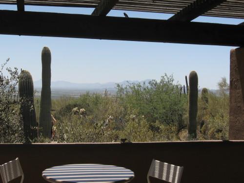 Shady Patio at Arizona Sonora Desert Museum