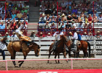 Bronc riding and other rodeo events are the centerpiece of Cheyenne Frontier Days. (photo credit: Katherine Rodeghier c 2013)