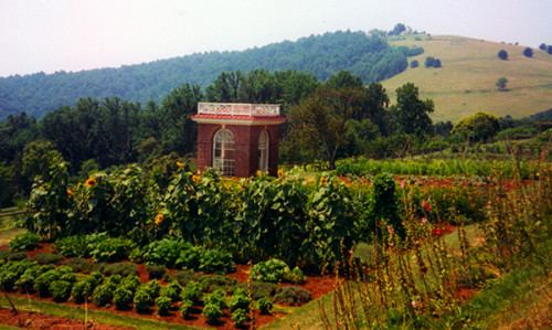 Vegetable gardens on the terrace at Monticello