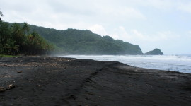 The rugged black-sand beach of Rosalie Bay