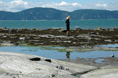 Looking at the tidepools on L'Île Aux Lièvres (Roberta Sotonoff)