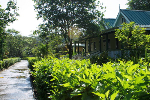 Rosalie Bay Resort's green footprint takes its cues from traditional Dominica architecture.
