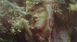 Carving at the Trees of Mystery park in Klamath, California (Photo MCArnott)