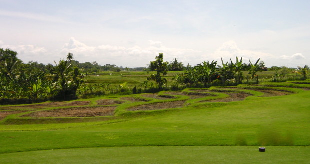 Rice paddies as golf hazards at Nirwana Golf course (Photo credit:  MCArnott)