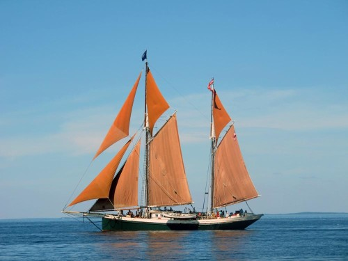 Angelique on Penobscot Bay (Photo by Hilary Nangle)