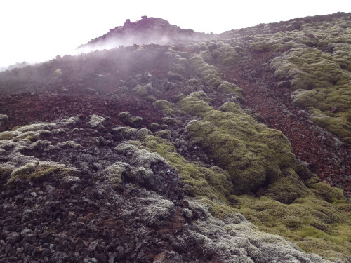 Iceland's patent moonscape
